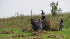Men charged with iron forks hay dry on the meadow in a cart pulled by horse Stock Footage