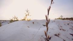 Winter landscape. Sunset. Shot with slider. Frozen lake. Stock Footage