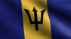 Barbados Flag - Seamless Looping Stock Footage