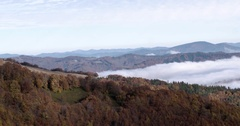 Mystical Coastal Fog Rolling in Over Pine Tree Covered Mountain Ridge Slow Stock Footage