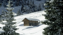 Wooden Hut in wintry mountains between snow covered trees Stock Footage