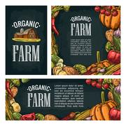 Set horizontal, vertical and square posters with vegetables. Vintage engravin Piirros