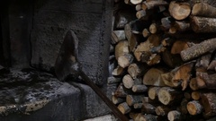 Wood-burning oven off Stock Footage