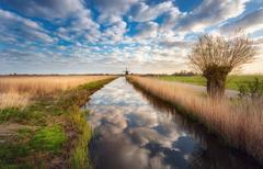 Fields near the water canal at sunrise in Netherlands Stock Photos