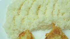 Rice and fried fish on a plate rotates slowly Stock Footage