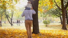 Cute baby sitting on fathers shoulders walking at autumn park Stock Footage