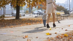 Slow motion footage of cute baby boy running after pigeons at autumn park Stock Footage