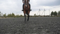 Male jockey at horse jogging at manege at farm. Slow motion. Front view Stock Footage