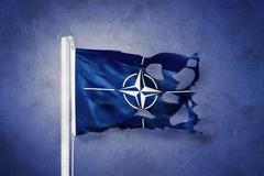 Torn flag of the North Atlantic Treaty Organization NATO against grunge Stock Illustration