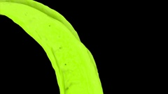 Color background - light green paint flowing in slow motion - on black (FULL HD) Stock Footage