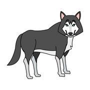 Wolf cartoon icon Piirros