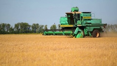Combine Harvester harvesting in a field of wheat Stock Footage