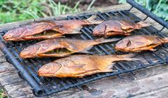 Just smoked fresh fish caught in Russian river Stock Photos