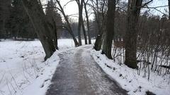 Monrepo Park in the winter. Vyborg. Russia. Stock Footage
