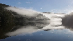 Perfect morning fog reflection at Lake Barrington Stock Footage