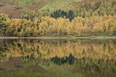 Beautiful Autumn Fall landscape image of Lake Buttermere in Lake District E.. Stock Photos