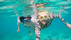 Diving on the island of Bali. The young couple dives with aqualungs. On the Stock Footage