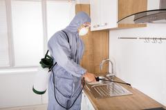 Pest Control Worker Spraying Pesticide In Kitchen Stock Photos