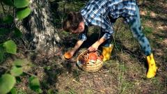 Female mushroom picker girl pick boletus mushroom and put it into basket Stock Footage