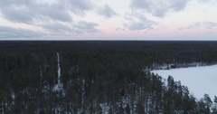 Aerial side flight over winter pine forest in evening Stock Footage