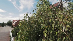 Old small brick building covered in green leaves in park with russian sign Stock Footage