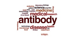 Antibody animated word cloud, text design animation. Stock Footage