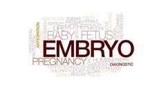 Embryo animated word cloud, text design animation. Kinetic typography. Stock Footage