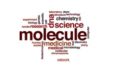 Molecule animated word cloud, text design animation. Stock Footage