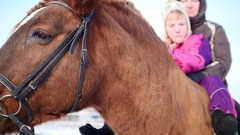 Hippotherapy for kid with cerebral palsy syndrome at winter cold day - contact Stock Footage