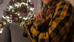 Little doggy in girls arms. Christmas tree and holidays spirit. 4K UHD Stock Footage