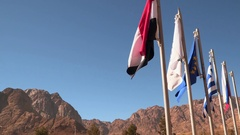 Flags of different countries on a background of mountains Stock Footage