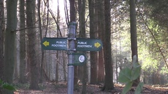 Public footpath sign Sulham wood  Stock Footage