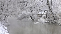 Wild ducks in the winter river Stock Footage