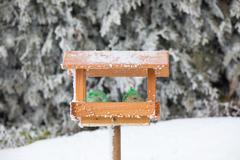 Bird house or bird feeder in winter garden Stock Photos