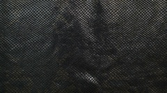 Texture genuine leather, embossed under skin black python, background. Dolly Stock Footage
