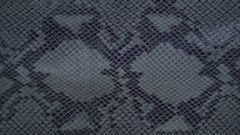 Texture genuine leather, embossed under skin gray python close up, background Stock Footage