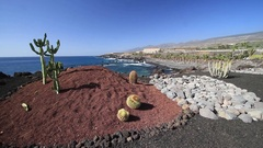 View of coast and Atlantic ocean in Tenerife, Canary Islands, Spain Stock Footage