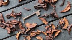 Rustic food. Dry Pear Fruit Stock Footage