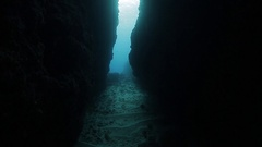 Underwater shoot of freedivers Stock Footage