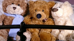 Three teddy bears in a line. Stock Footage