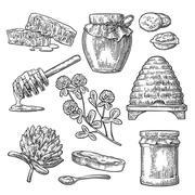 Honey set. Jars of honey, bee, hive, clover, spoon, honeycomb. Stock Illustration