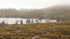 Hiker walking Overland Track in intense rain Stock Footage