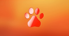 Paw Red 3d Icon Stock Footage