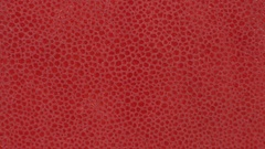Texture genuine leather, embossed under skin close up, background. Dolly Left Stock Footage