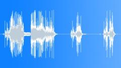 Chomping celery 05 Sound Effect