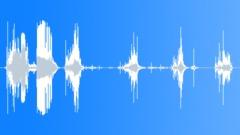 Chomping celery 08 Sound Effect