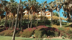 Panorama in Malaga,Spain with green trees,houses and palmas June 2016 Stock Footage