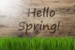 Sunny Wooden Background, Gras, Text Hello Spring Stock Photos