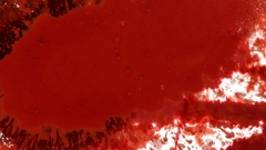 Horror Blood On White Texture Stock Footage