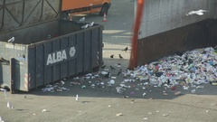 Birds picking at rubbish in dump Stock Footage